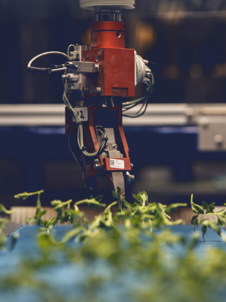 Integrating computer vision into horticulture robots
