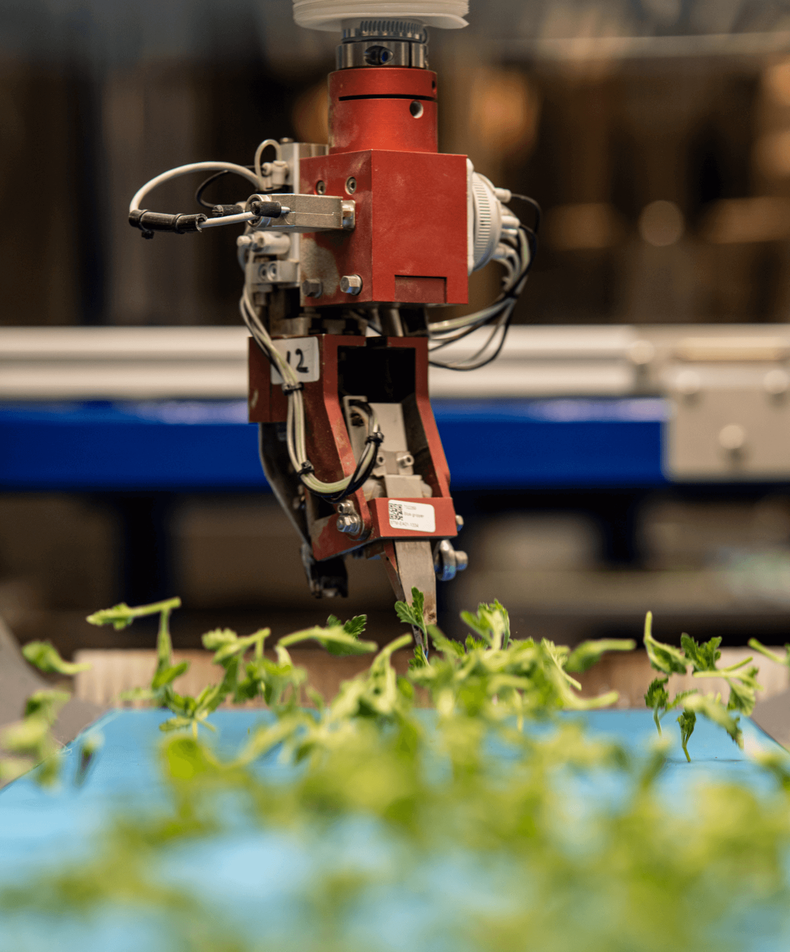 Intelligent machines in argiculture